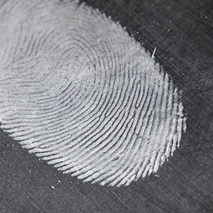 forensic and bio remediation australian forensic cleaning
