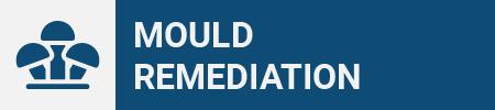 Mould Remediation Icon