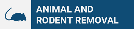 Animal and Rodent Removal Icon