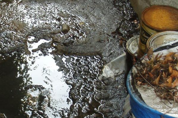 Sewage Remediation